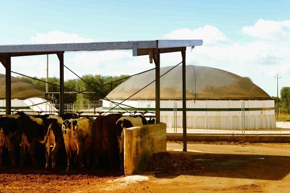 produzione_biogas