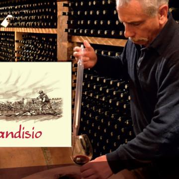 brandisio