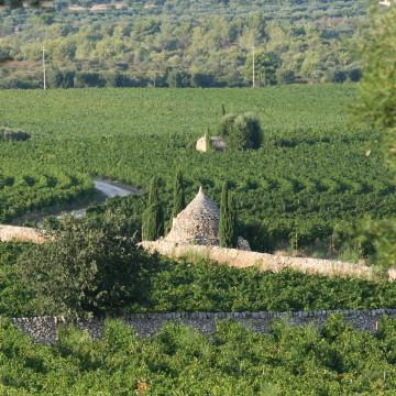 Masseria Amastuola - Crispiano